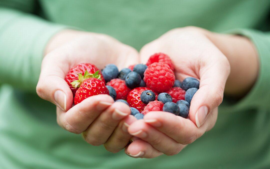 Vers fruit - Berry Briljant