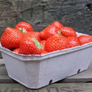 Aardbeien - Aardbeienland